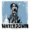Waterdown – Into The Flames