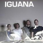 Iguana – Get The City Love You