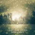 Last Leaf Down – Fake Lights