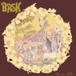 Bask – American Hollow