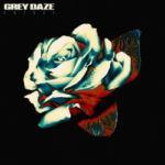 Grey Daze – Amends