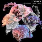 Cazador – Acceptance//Isolation